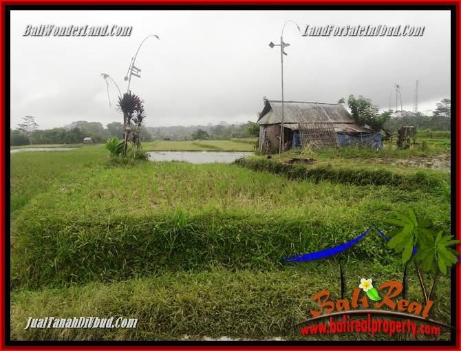 Magnificent Property Ubud Bali Land for sale TJUB699