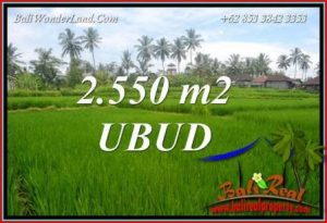 FOR sale Exotic Land in Ubud Pejeng Bali TJUB700
