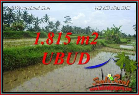Beautiful Property 1,815 m2 Land sale in Ubud Pejeng TJUB703