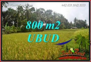Affordable 800 m2 Land sale in Ubud Bali TJUB707