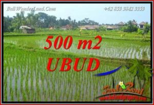 Beautiful Land in Ubud for sale TJUB708