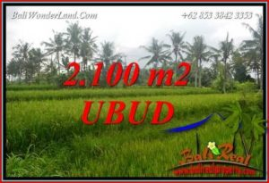 Beautiful 2,100 m2 Land for sale in Ubud Pejeng TJUB710