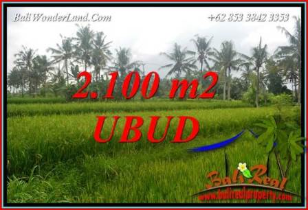 Affordable Property 2,100 m2 Land in Ubud Pejeng for sale TJUB710