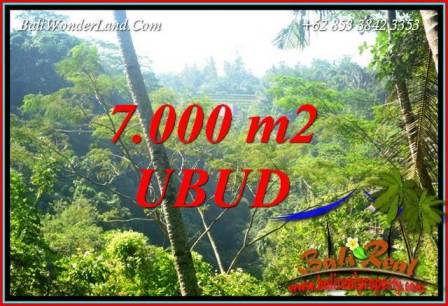 Magnificent Land in Ubud for sale TJUB714