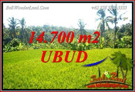 Affordable 14,700 m2 Land sale in Ubud Bali TJUB717