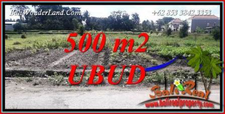 Exotic Ubud Land for sale TJUB720