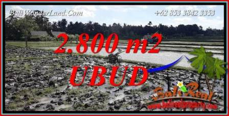 Affordable 2,800 m2 Land in Ubud Bali for sale TJUB722