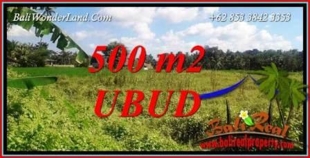 500 m2 Land sale in Ubud Bali TJUB724