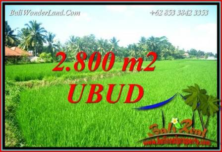 FOR sale Affordable Property 2,800 m2 Land in Sentral Ubud TJUB726