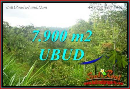 Magnificent Property 7,900 m2 Land in Ubud Tegalalang Bali for sale TJUB729