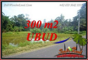 Exotic Property Land in Ubud Bali for sale TJUB730