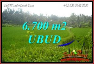 6,700 m2 Land in Ubud Bali for sale TJUB731