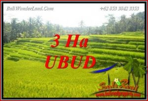 Land in Ubud for sale TJUB733