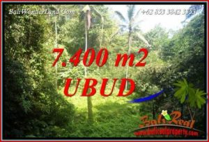 FOR sale Magnificent Property Land in Ubud TJUB734