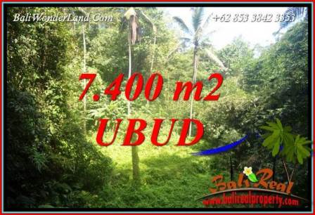 Beautiful Property Land for sale in Ubud Bali TJUB734
