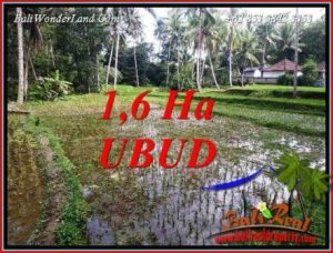 FOR sale Exotic Land in Ubud Tegalalang Bali TJUB735