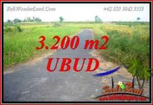 Exotic 3,200 m2 Land sale in Ubud Bali TJUB736