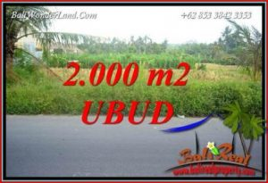 Beautiful 2,000 m2 Land sale in Ubud Bali TJUB737
