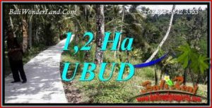 FOR sale Affordable Property Land in Ubud TJUB740
