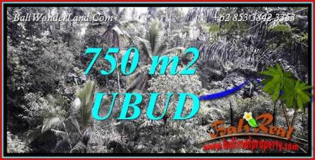 Magnificent Ubud Tampak Siring 750 m2 Land for sale TJUB742