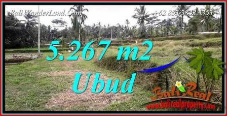 Magnificent Land in Ubud for sale TJUB743