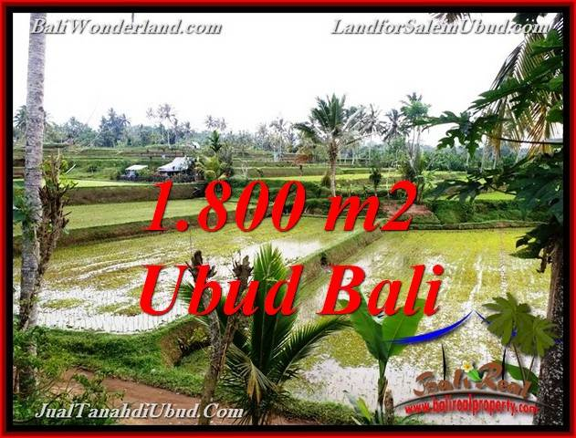 Beautiful PROPERTY TEGALALANG UBUD 1,800 m2 LAND FOR SALE TJUB769