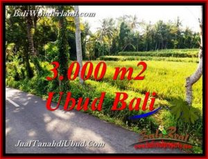 FOR SALE Magnificent 3,000 m2 LAND IN UBUD BALI TJUB771