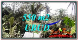 Exotic 550 m2 LAND IN Ubud Pejeng FOR SALE TJUB751