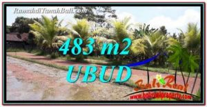 FOR SALE Exotic LAND IN Ubud Pejeng BALI TJUB752
