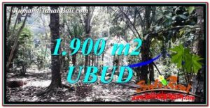 FOR SALE Magnificent PROPERTY LAND IN UBUD TJUB755