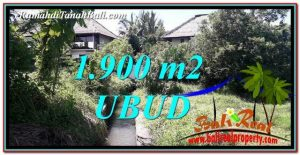 Magnificent PROPERTY 1,900 m2 LAND FOR SALE IN Ubud Gianyar BALI TJUB759