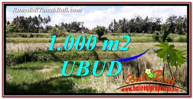 Beautiful PROPERTY Ubud Pejeng BALI 1,000 m2 LAND FOR SALE TJUB760