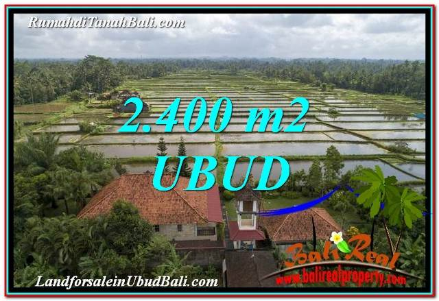 Magnificent PROPERTY 2,400 m2 LAND IN Ubud Pejeng FOR SALE TJUB761
