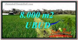Exotic PROPERTY LAND SALE IN UBUD TJUB763