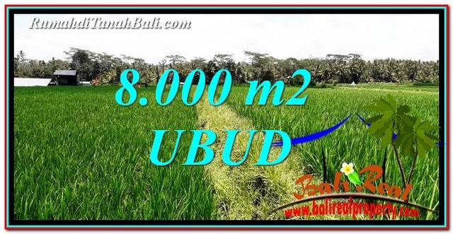 Exotic PROPERTY LAND SALE IN UBUD TJUB763