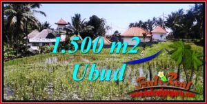 Beautiful PROPERTY 1,500 m2 LAND IN Ubud Tegalalang BALI FOR SALE TJUB744