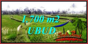 FOR SALE 1,700 m2 LAND IN UBUD BALI TJUB745