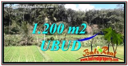 Magnificent 1,200 m2 LAND SALE IN Ubud Tegalalang TJUB746