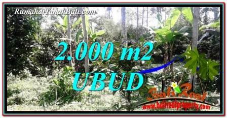 LAND SALE IN Ubud Tegalalang BALI TJUB747