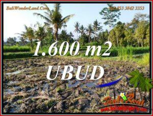 Affordable LAND for SALE in UBUD BALI TJUB807