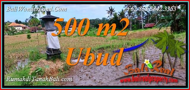Affordable PROPERTY 500 m2 LAND in UBUD for SALE TJUB812