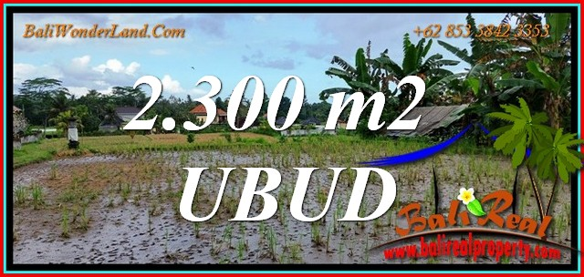 FOR SALE Affordable PROPERTY 2,300 m2 LAND in Tampaksiring BALI TJUB813